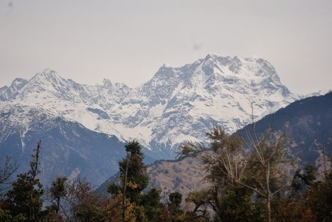 A closer and clearer look of the Himalayas from the Machaan