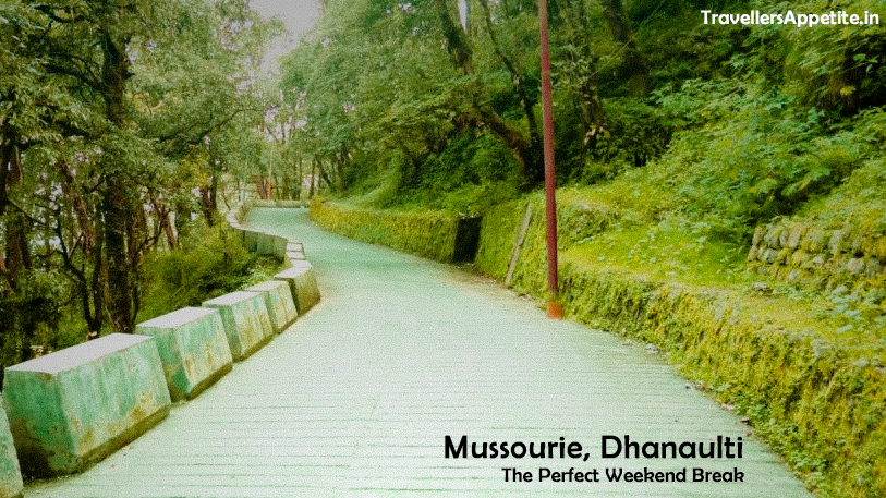 Dhanaulti & Mussoorie : A Perfect weekend Getaway